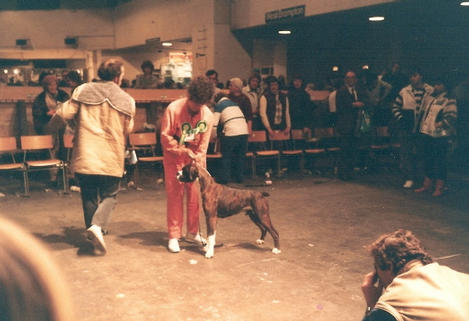 Dressed To Kill-Crufts '86 BOB
