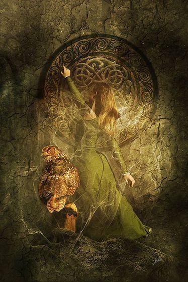 Celtic Woman & Owl