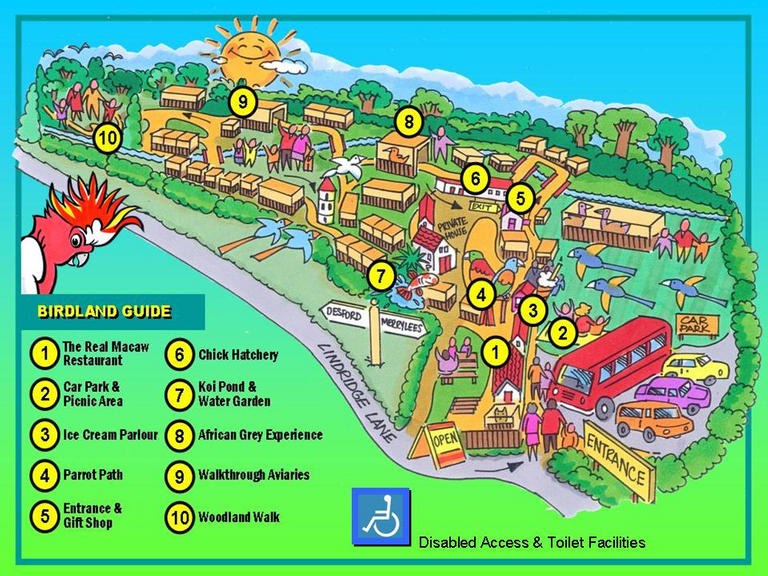 Cartoon 3D map of Birdgarden layout showing attractions.