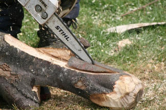 Cutting with a chain saw