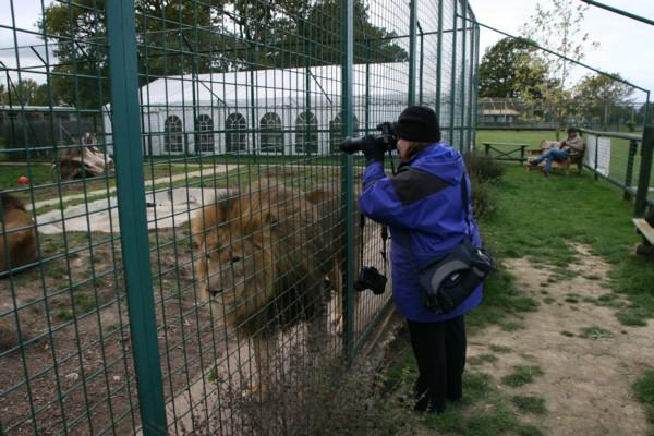 Carol with Lion