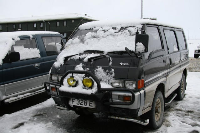 Mitsi in snow