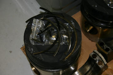Piston crown and rings