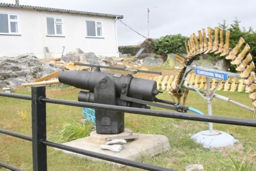 Whale Gun