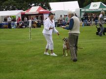 Abbey receiving her award Leeds Ch. show