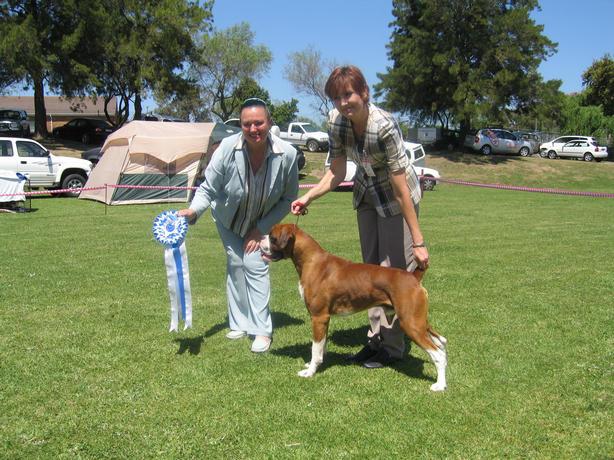 DOG C.C. winner