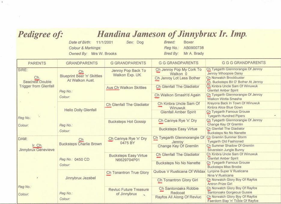 Jameson's pedigree