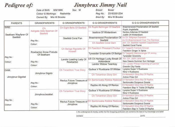 Jimmy Nail's pedigree