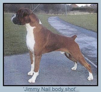 Jinnybrux Jimmy Nail