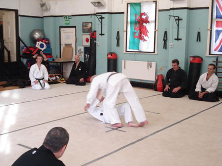 Judo throw, boy throws man.