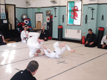 Judo throw 2