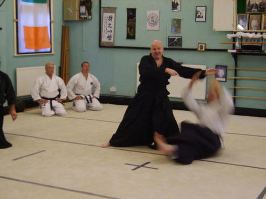 Steve smiling, whilst throwing Aikido style.