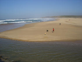 Carrapateira beach (20km)