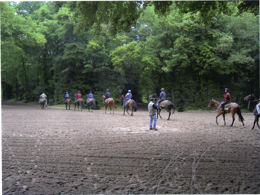 The gallops at Chantilly