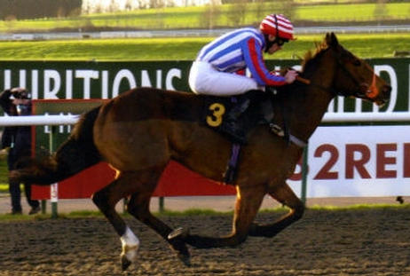 Play Up Pompey winning at Lingfield