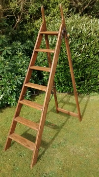 Antique Library Ladders
