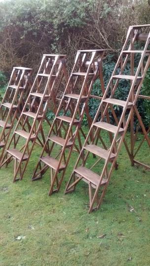 Old Step Ladders