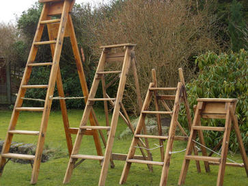 Old Step Ladders